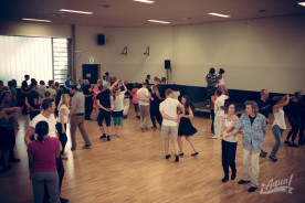 agua-salsa-workshops-20152786